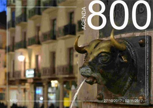 Agenda 19. Detalle fuente Plz. del Torico 2015.