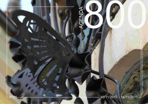 Agenda 21. Detalle del balcón Casa Bayo 2015.